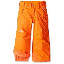 Pantalon De Ski North Face Freedom Insulated Orange