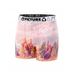 Boxer Picture Organic Underwear 17S Tallin