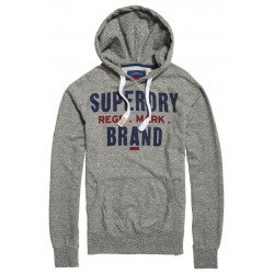 Sweat à Capuche Superdry Eagle Regd Hood Grey Grit